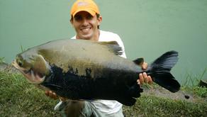 Pesqueiro Novo Anhanguera - Sol, Calor e muitos peixes