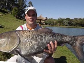 Pesqueiro Taquari - Dia das carpas cabeçudas