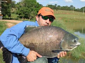 Fazenda Paraná - Os grandes tambacus não dão descanso aos Fishingtur