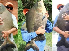 Fishingtur: Uma história, uma vida no mundo da Pesca Esportiva