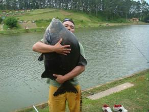 Pesqueiro Taquari – A temporada já começou e os gigantes estão atacando no Taquari