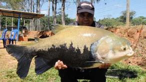 Kiki Turismo - O Fishingtur em busca dos grandes peixes mineiros