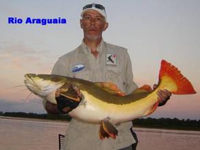 Saiba tudo sobre a pescaria dos peixes de couro