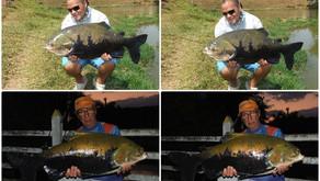 Fazenda Paraná - Dias difíceis com peixes manhosos