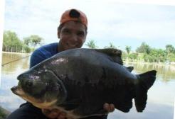 Pesqueiro Santa Clara - Conheça este ótimo pesqueiro