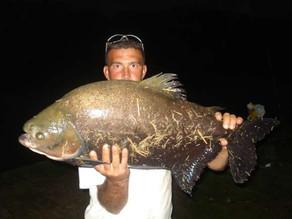 Pesqueiro Taquari – Nosso leitor Renato em um dia de inverno em São Roque