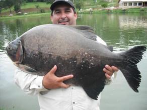 Pesqueiro Taquari - Sempre com gigantes nos braços