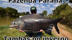 Fazenda Paraná - Pescaria com modalidades diferentes