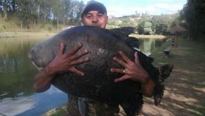 Pesqueiro Taquari – Um início de inverno com bons peixes na foto