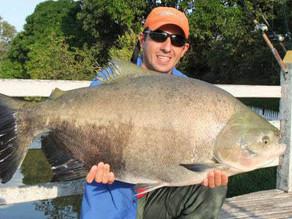 Fazenda Paraná - O Fishingtur foi conhecer de perto  a casa dos gigantes em MG