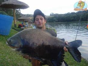 Pesqueiro Taquari - Muitos peixes e amigos no taqua