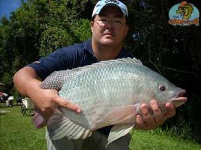 Pesqueiro Taquari - 7. Torneio Fishingtur