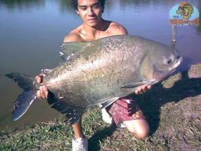 Pesqueiro Bem-te-vi – Um bom pesqueiro na região de Piracicaba