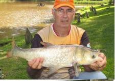 Pesqueiro Lago Azul - Carpas Cabeçudas em Atibaia