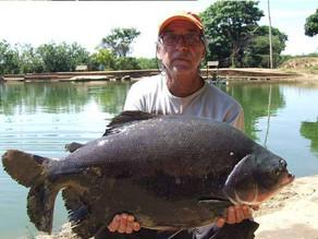 Pesqueiro Lago Azul – New point que o Fishingtur foi buscar e mostra aqui nessa matéria para vocês!!
