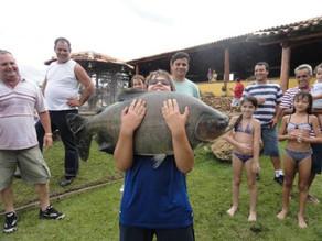 Fazenda Pacu – Um grande tambacu e o primeiro lugar no torneio