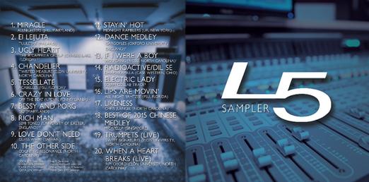 Liquid 5th Sampler Album Art