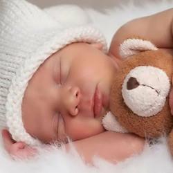 bebe y oso
