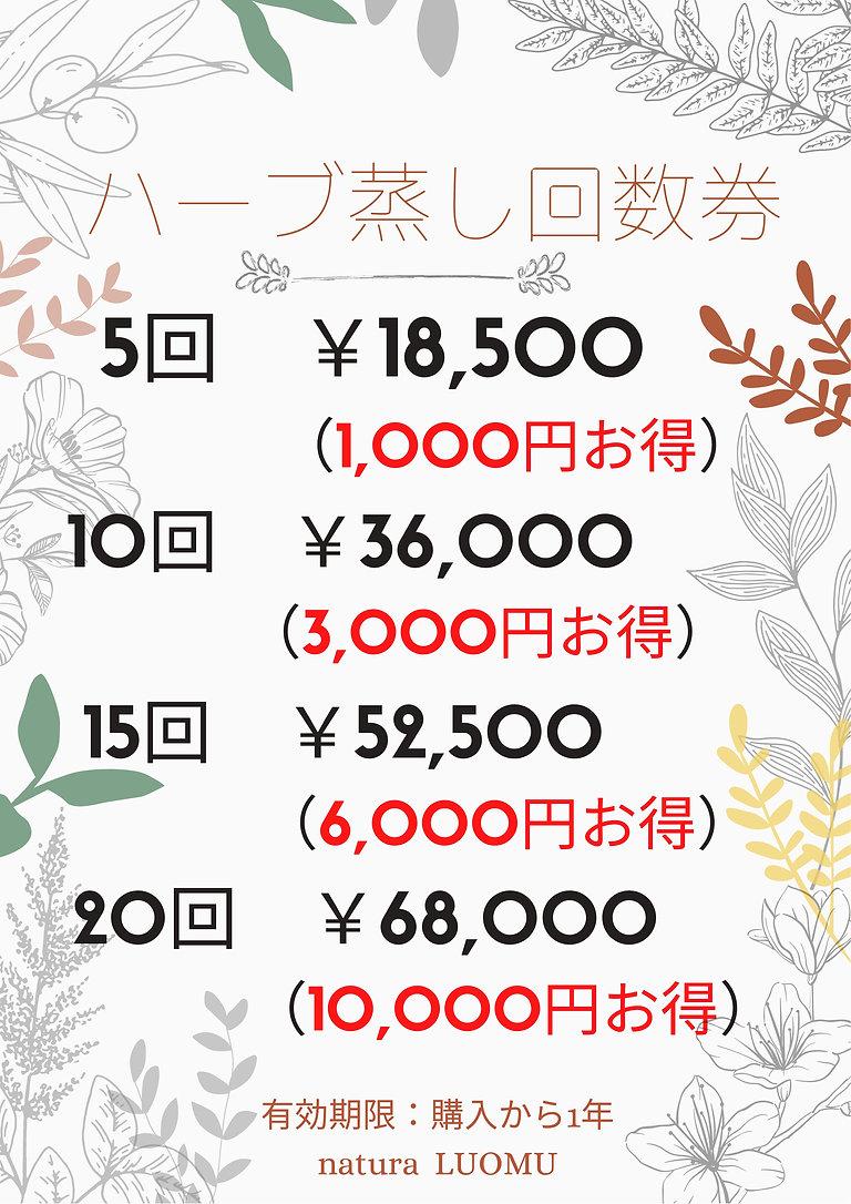 5回 ¥14,500 (3).jpg