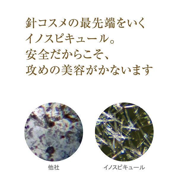 img01-03.jpg