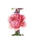 SnapCrab_NoName_2021-1-21_19-9-1_No-00.p