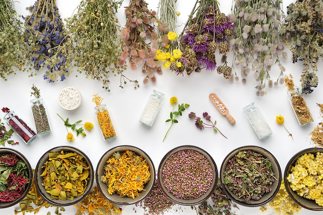 Bottles of homeopathic granules and dry medicinal plants. Bowls of dry medicinal herbs and