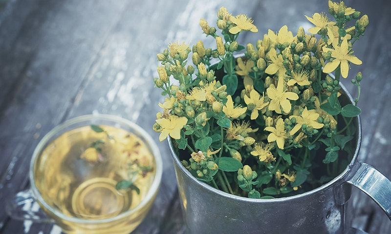 top_herb_st_johns_wort.jpg