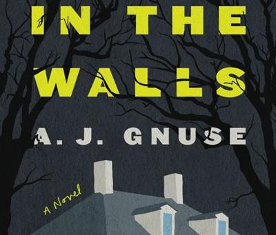 Gillian Flynn + John Green = A.J. Gnuse