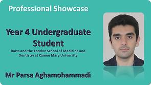 P Aghamohammadi Professional Showcase.png