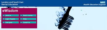 eWisdom Logo.png
