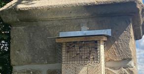 Insektenhotels wurden aufgehängt