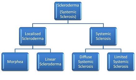 SSc chart.jpg