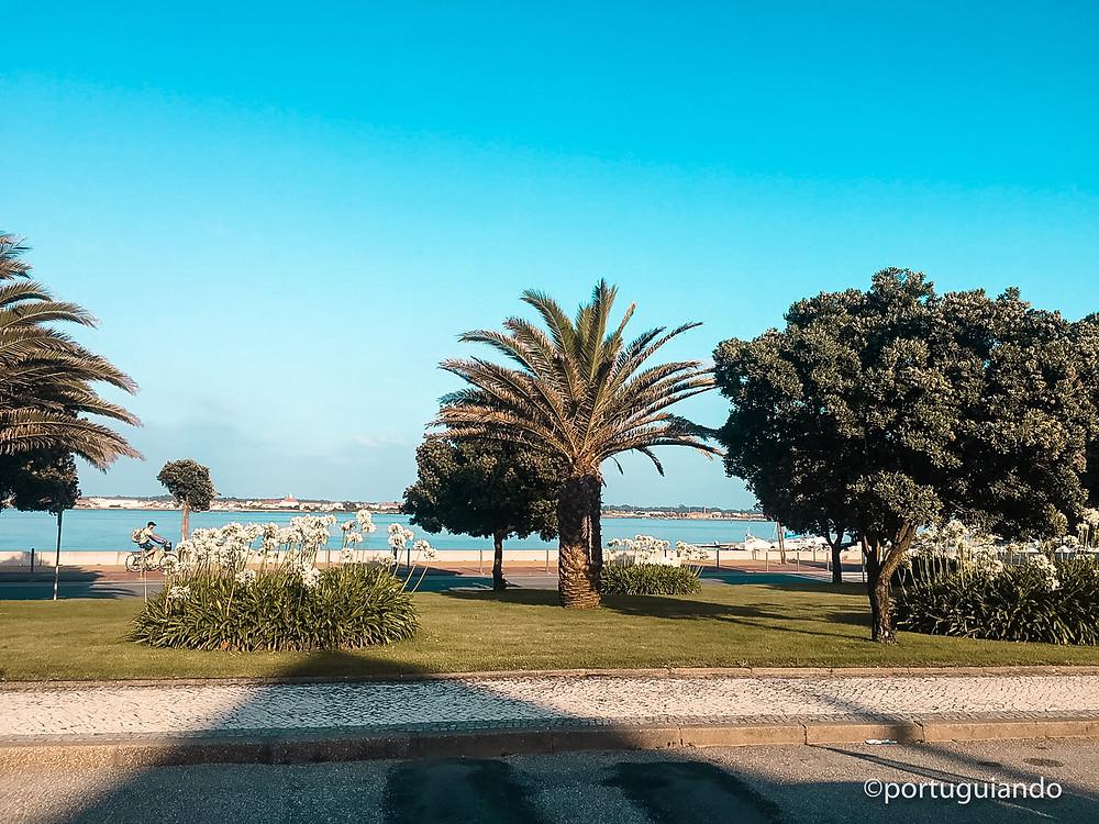 Praia da Costa Nova em Aveiro