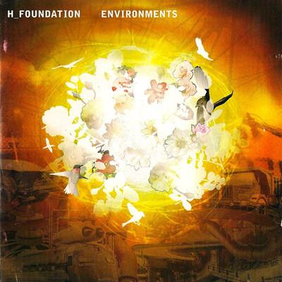 H-Foundation-Environments.jpg