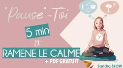 #5 5MIN ET RAMENE LE CALME.001
