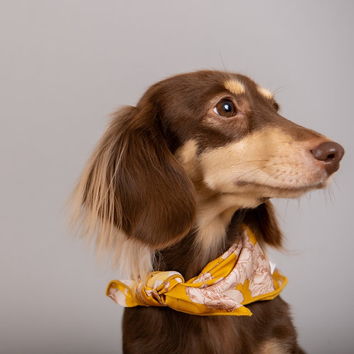 Doggy Bandana Flower
