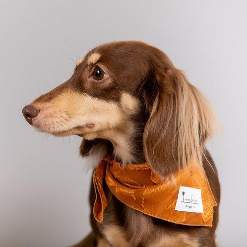 Doggy Bandana Paisley