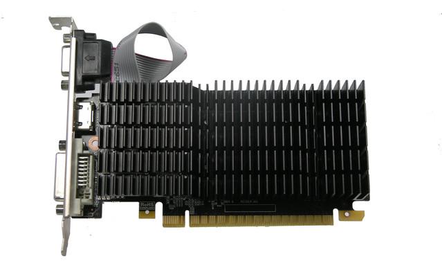 P1017385.JPG