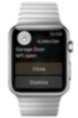 Apple Watch Control