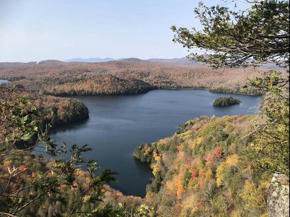 View on Nichol's Lake