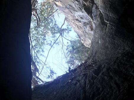 Donahue Sea Caves