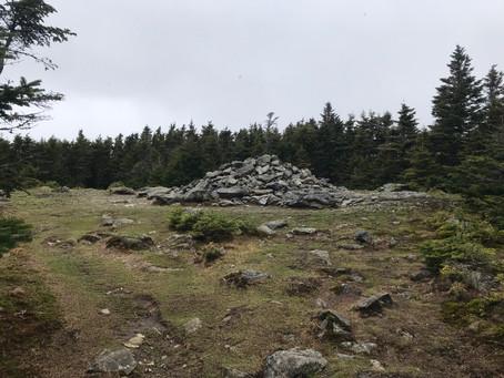 Mount Hale Via Hale Brook Trail