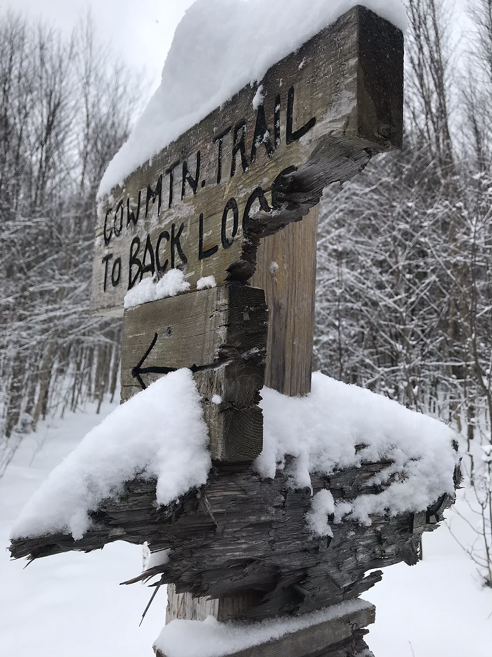 Beat up Cow Mountain trail sign