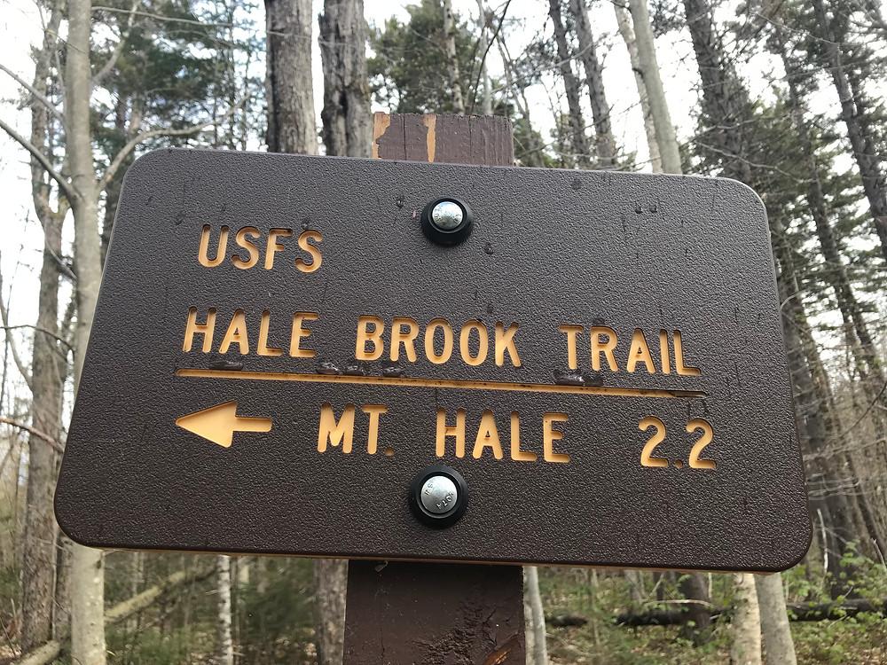 Mt. Hale Via Hale Brook Trail