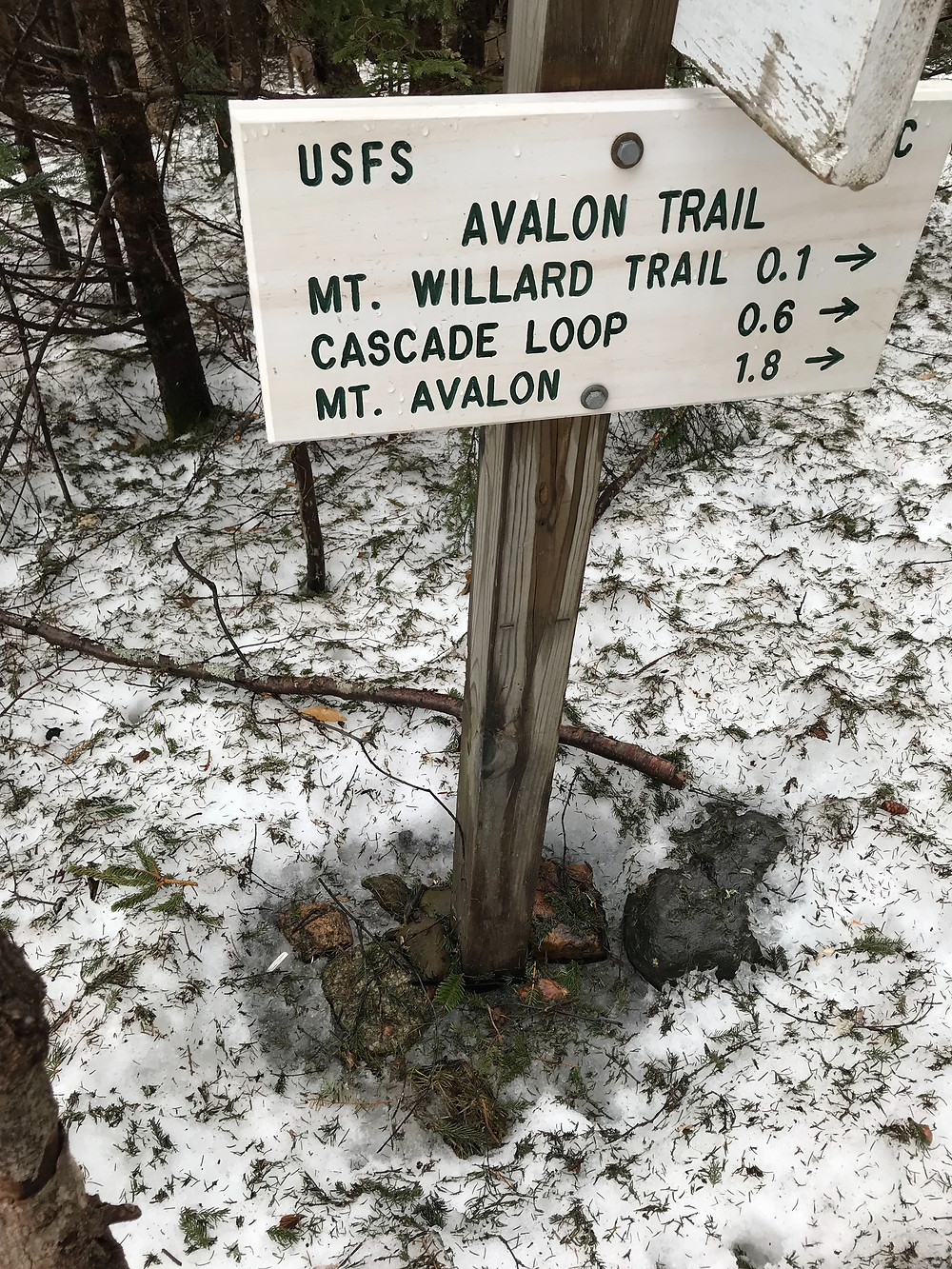 Mt. Willard Trail, Avalon Trail, Cascade loop, Mt. Avalon, Crawford Notch, New Hampshire, AMC