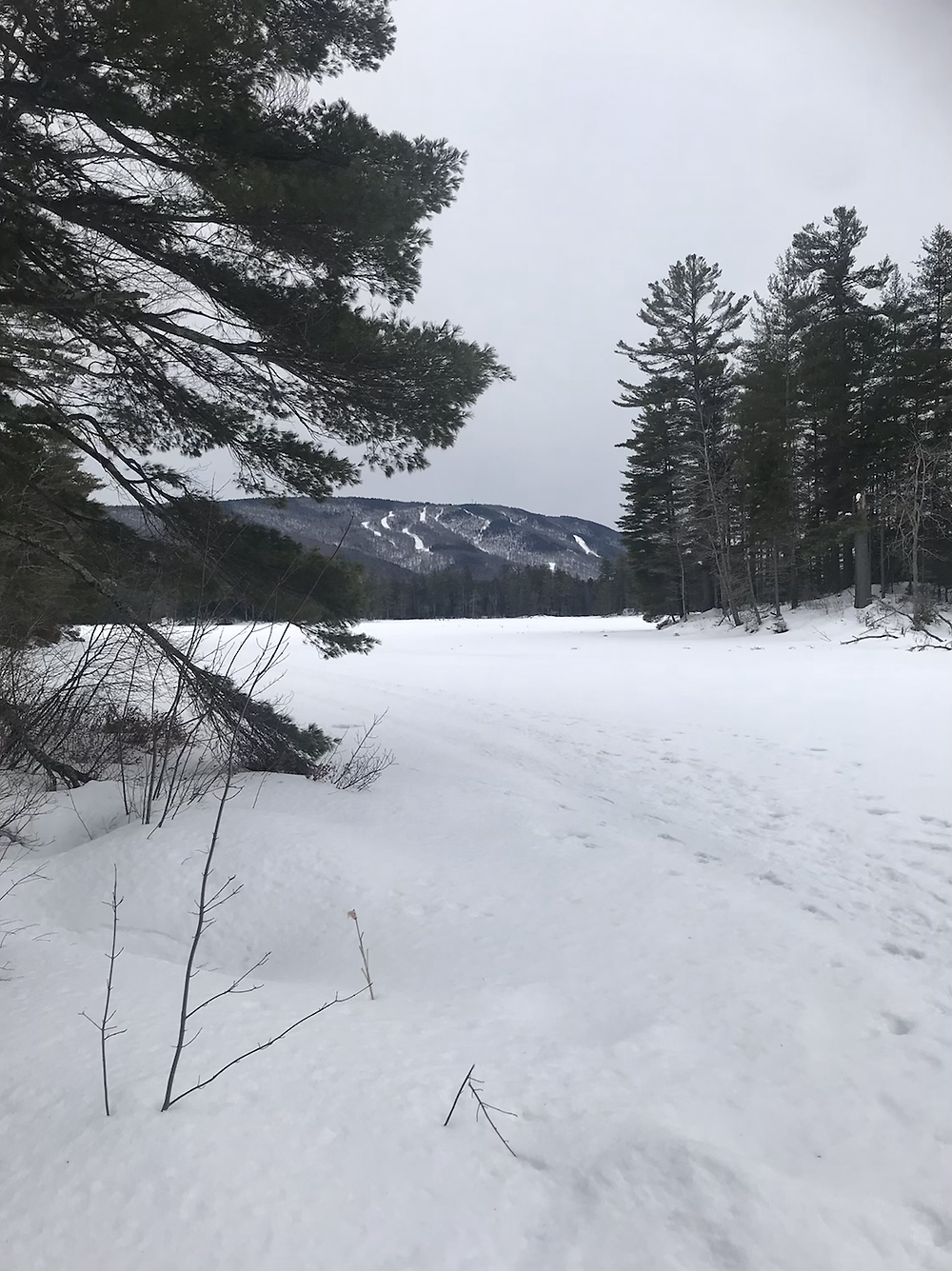 The frozen Lowell Lake
