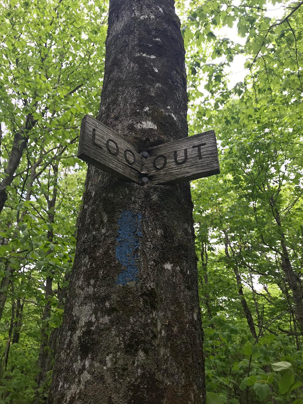 Herbert Hawkes Trail