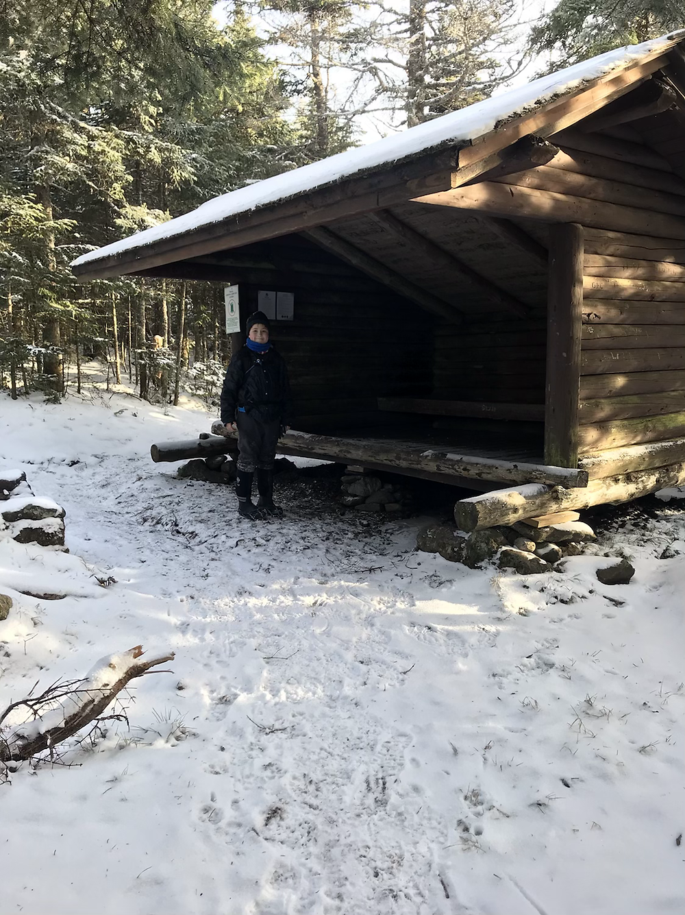 The 2nd lean-to on Burke Mountain
