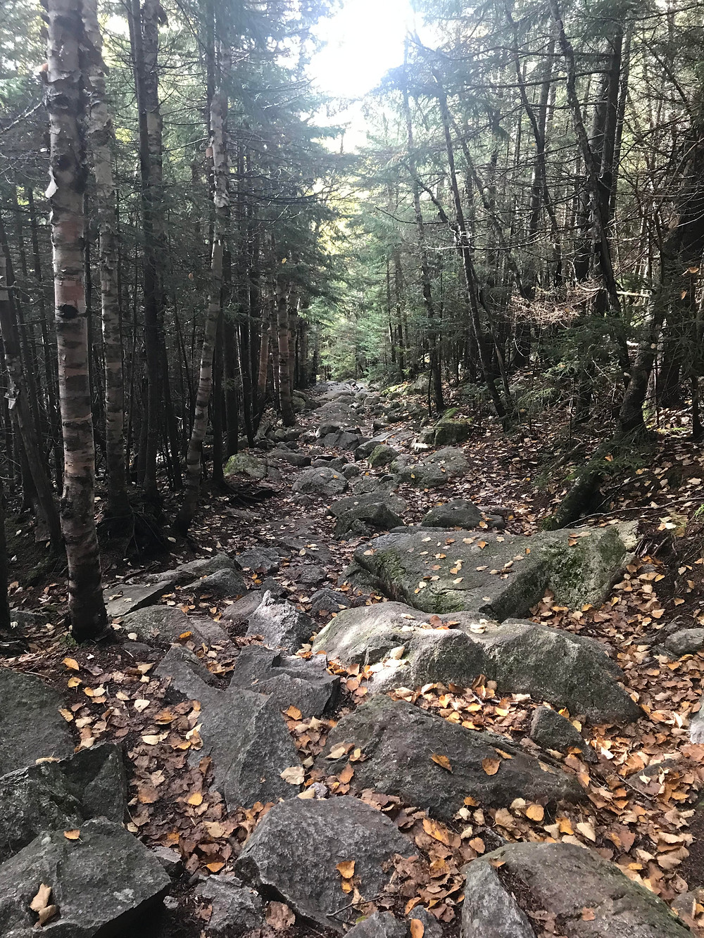 The rocky trail going up Mt. Osceola
