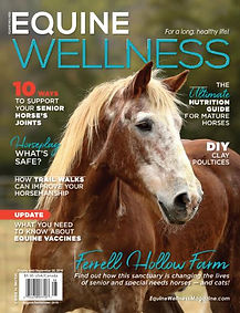 Equine Wellness Sept. 2019 Thumbnail.jpg
